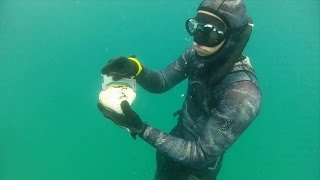 Video How To Dive For Pismo Clams. download MP3, 3GP, MP4, WEBM, AVI, FLV Desember 2017