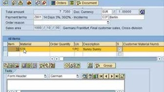 SAP Tutorial for beginners  - SAP ERP