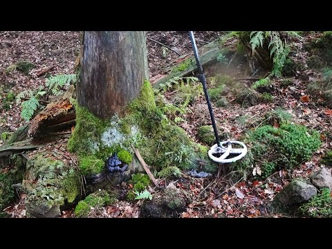 Big Surprise Under The Root! - Metal Detecting With Unexpected Finds