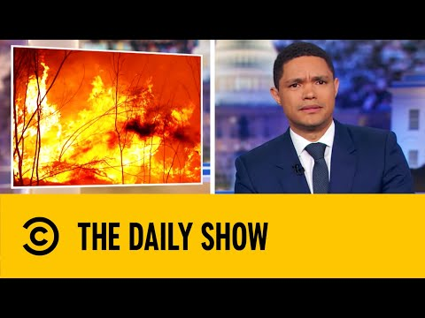 A Billion Animals Have Been Lost To the Australia Bushfires | The Daily Show With Trevor Noah