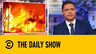 a-billion-animals-have-been-lost-to-the-australia-bushfires-the-daily-show-with-trevor-noah