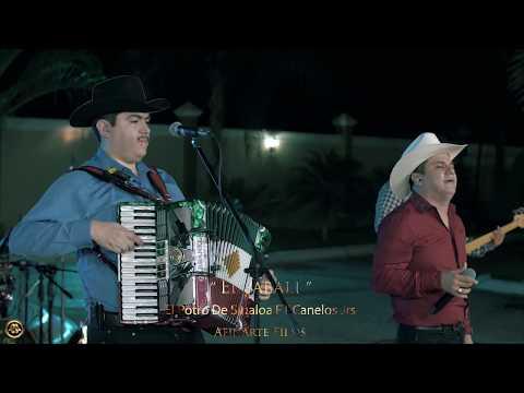 El Potro De Sinaloa Ft. Canelos Jrs - El Jabali (En Vivo 2018)