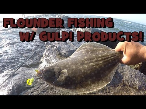 Fishing For FLUKE/SUMMER FLOUNDER In NJ! BONUS FOOTAGE -- #1