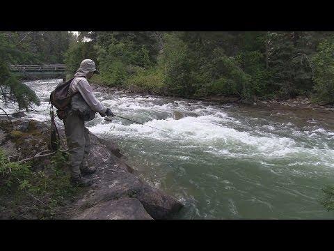 Fishing The Miette River, Alberta, Jasper NP