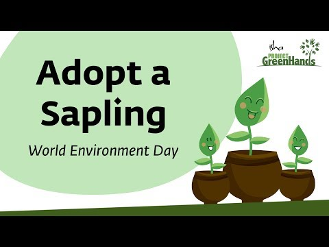 Adopt A Sapling This World Environment Day For Just Rs 100: Project GreenHands