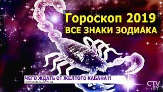 Гороскоп на 2019 год / Все знаки зодиака / Прогноз астрологический