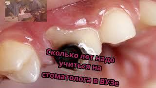 Сколько лет надо учиться на стоматолога в ВУЗе