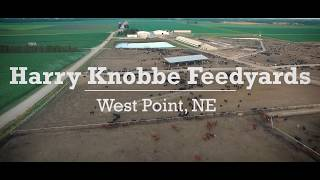 Knobbe Feedyards - West Point, NE