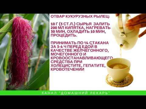 Лечебные свойства кукурузных рылец - Домашний лекарь - выпуск №124
