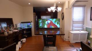 THIS PROJECTION SCREEN WILL BLOW YOUR MIND! OUR NEW TV LIKE WALLPAPER PROJECTION SCREEN 03/24/18