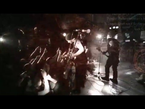 MxPx - Punk Rawk Show - Live