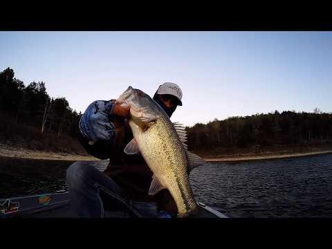 Lake Norfork Bass Fishing Cystic Fibrosis Tournament Mountain Home, Arkansas Top 50 Finish