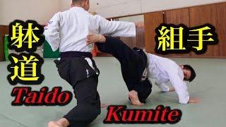 これが躰道の組手技術だ!Taido, Kumite technique! 躰道シリーズ【3】