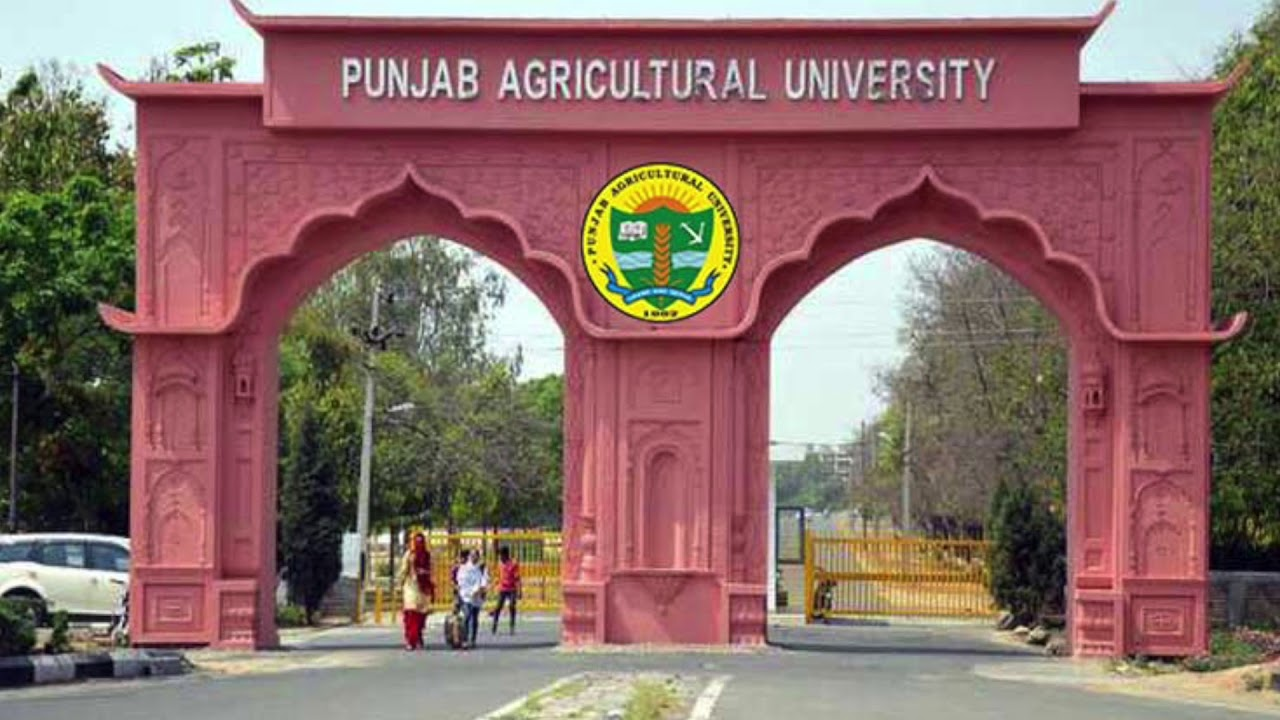 Captain Amarinder Singh congratulated Punjab Agricultural University (PAU) for No. 2 ranking by the Indian Council of Agricultural Research.