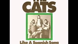 Watch Cats Like A Spanish Song video