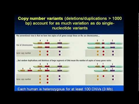 Introduction to Population Genetics - Lynn Jorde (2012)