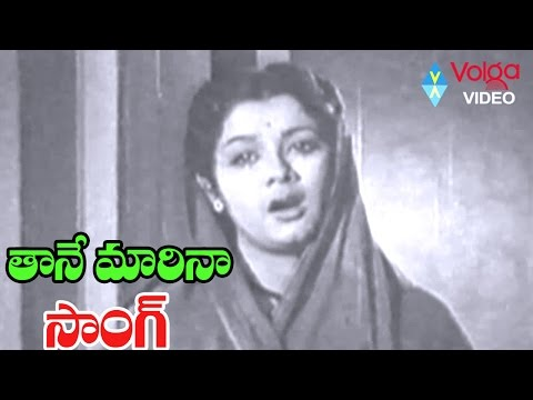 Devadasu Movie Song - Thaane Marenaa - ANR, Savitri