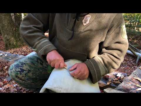 Maine Primitive Skills School Survival, Bushcraft, and Rewilding Introduction