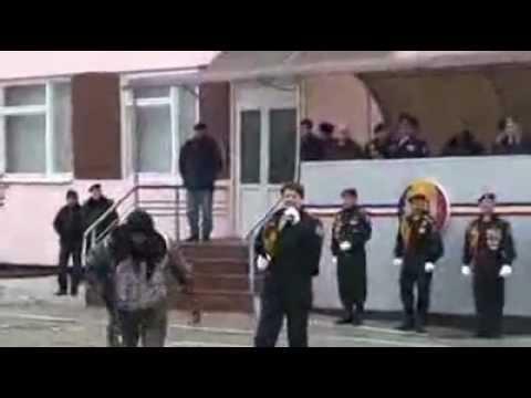 Cantă cucu in Bucovina si FUEGO