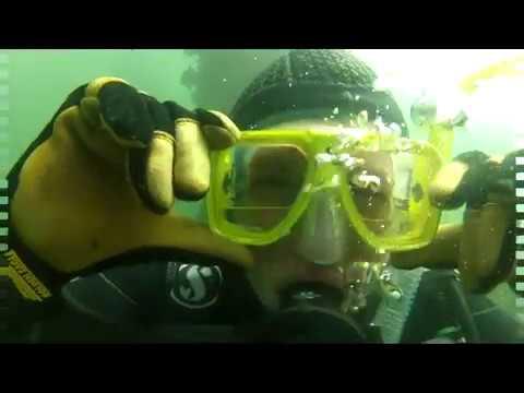 Ali Scuba Diving