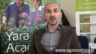 Yara Academy: focus sul pomodoro