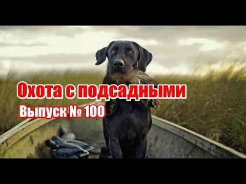 День охотника выпуск г
