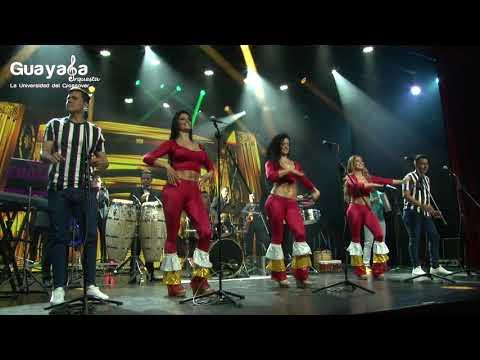 San Juanero -  La Cinta Verde (Guayaba Orquesta) CONTRATACIONES +573105638363