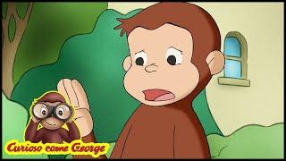 Curioso come George 🐵 Comitato Scientifico 🐵 Cartoni Animati per Bambini 🐵 Stagione 3