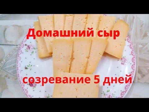 Сыр из топленого молока в домашних условиях