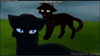 """Коты-воители  - """"Не вернется самолет"""".."""