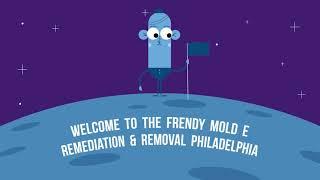 Best Mold Removal in Philadelphia, PA