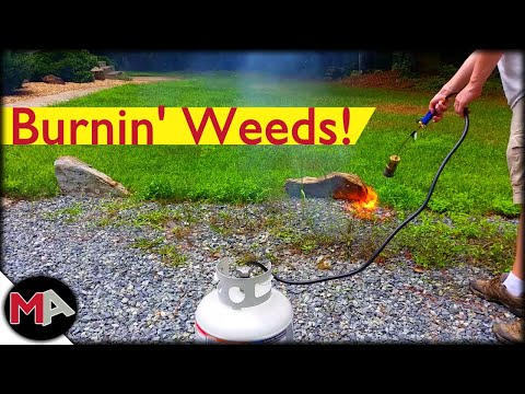 Burning Weeds With A Propane Torch