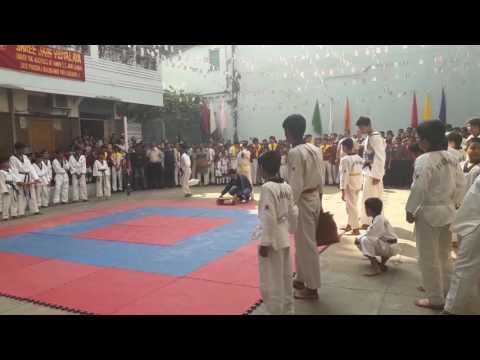 Taekwondo demo in sjv school kolkata
