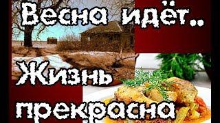 VLOG. Рассада, прогулка, тушу рыбу в овощах, поддончик для кинетического песка.