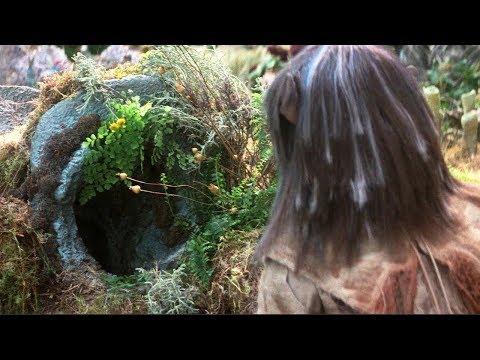 【穷电影】男子来到古怪森林,发现个洞穴,靠近后却被里面的东西吓到了