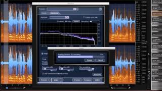 Clean Up Changing Background Noise with RX 2 | iZotope Tips From A Pro