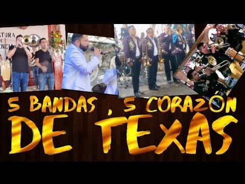 5 Corazón De Texas Con 5 Bandas Diferentes