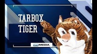 Tarbox Tiger - LPS Mascot Challenge