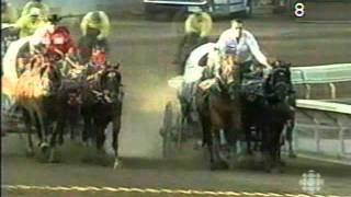 Horse Dies during Calgary Stampede