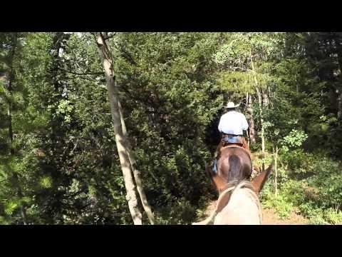 Horseback Ride Utah part 1