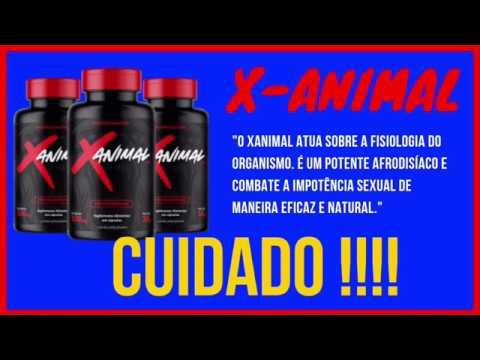 X-Animal Funciona ? X-Animal Onde Comprar ? X-Animal Depoimento.