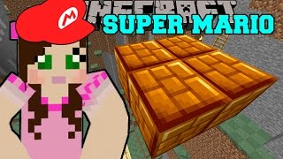 Minecraft: CRAZY WATER LEVEL! - SUPER MARIO BROS - Custom Map [4]