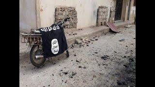 СШа заявили, что избавились в Сирии от главного нефтяника ИГИЛ*