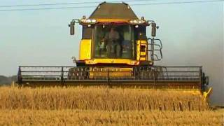 CX8070 i CX8030 Kombajny New Holland w akcji żniwnej pszenica 2011