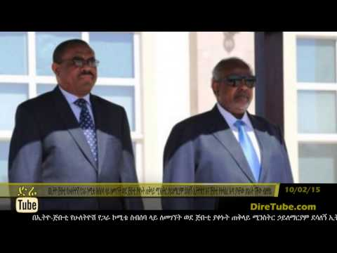 DireTube News - PM Hailemariam: Ethiopia and Djibouti surfing in same boat