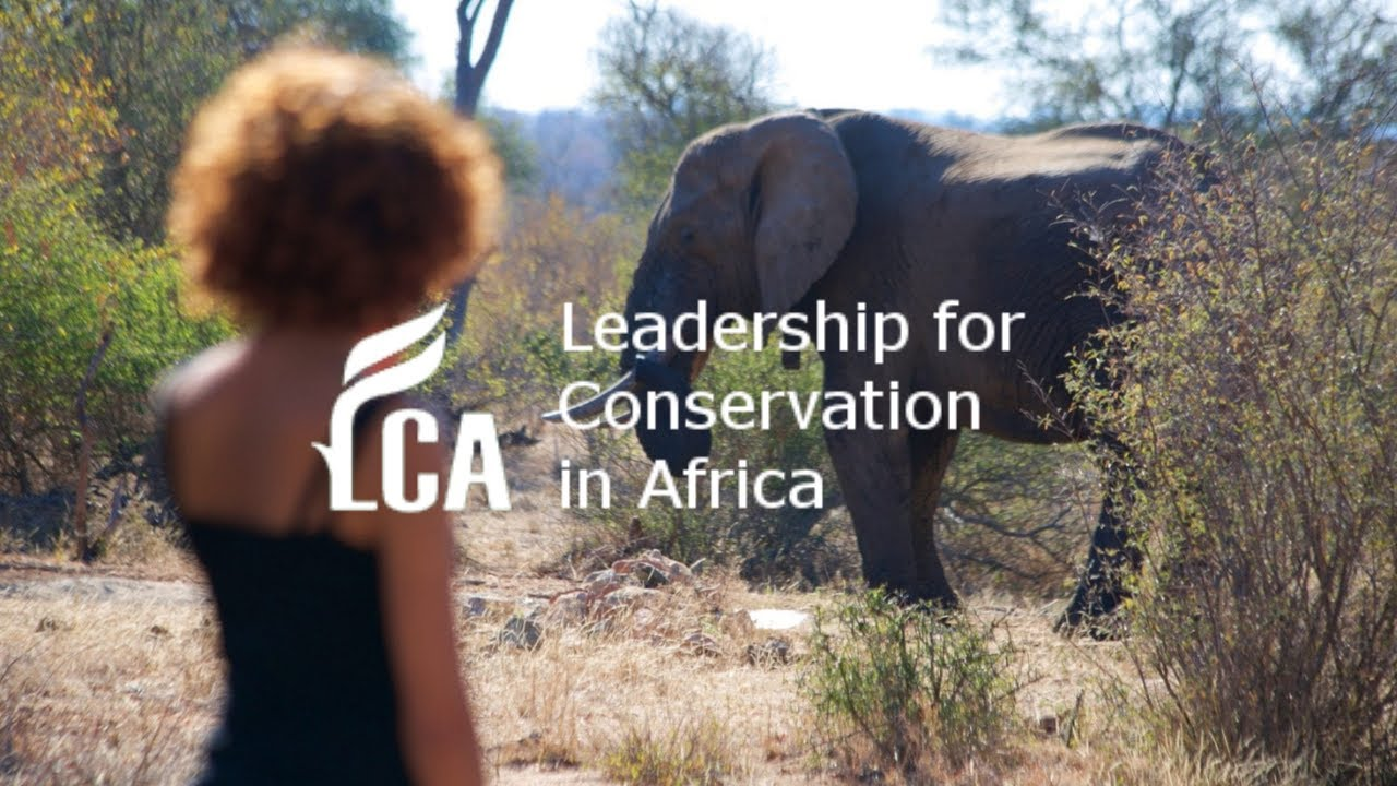 Women, Wildlife Crime & Conservation