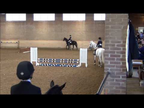 2/5 Hollywood Equine At Ethel Walker School IEA Show Varsity Intermediate|| 10/11/2014