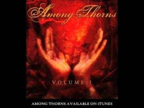 Among Thorns - Embrace This Place