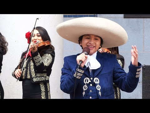 """Coco"" star Anthony Gonzalez performs ""Remember Me"" and ""Un Poco Loco"" at Coco Day in L.A."