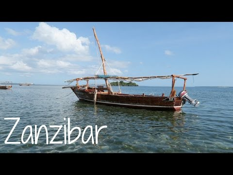 Zanzibar Travels (Stone Town, Safari Blue, Spice Tour) | Ali Coultas